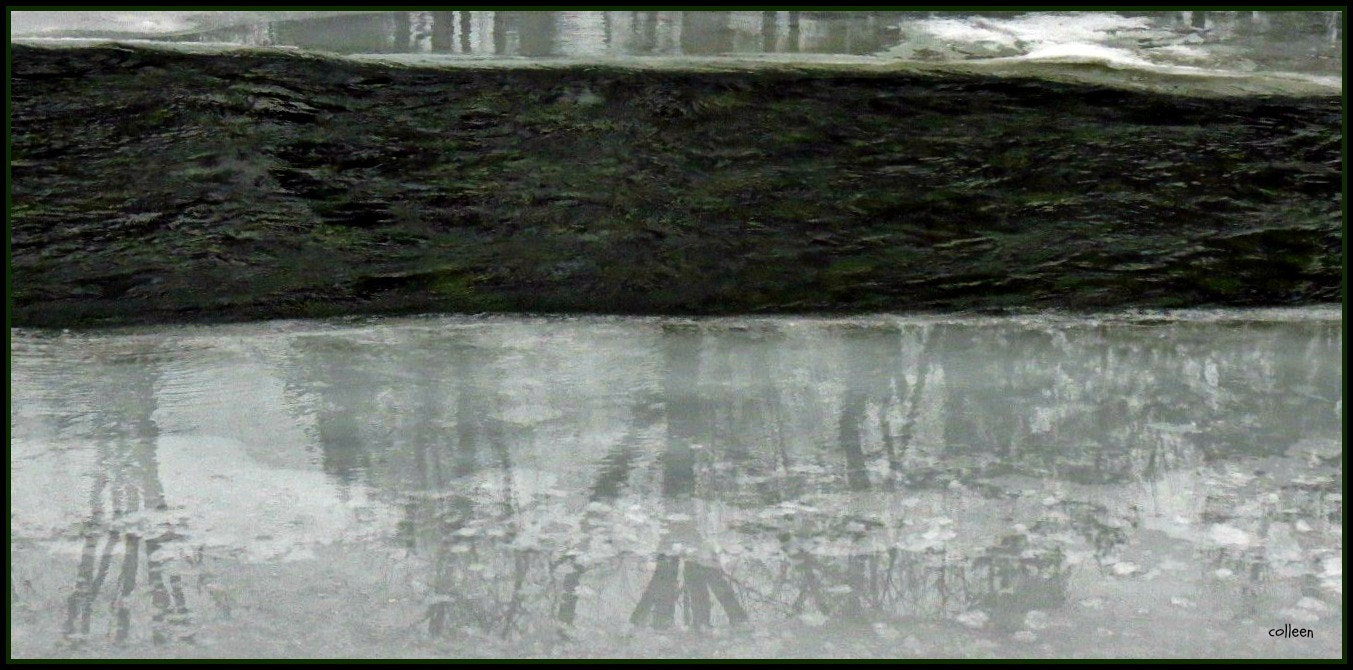 Photograph Reflections In The River Ice! by colleen thurgood on 500px