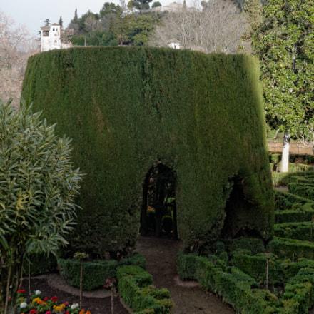 Gardens of Alhambra, Nikon D7000, Sigma 18-125mm F3.5-5.6 DC