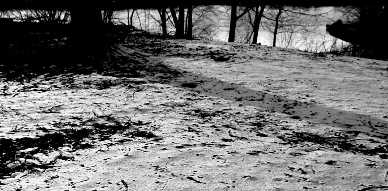 Photograph The Deep Silence by Alessandra Doederlein on 500px