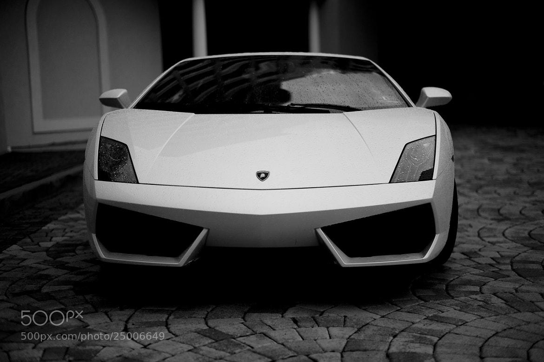Photograph Lamborghini by p z on 500px