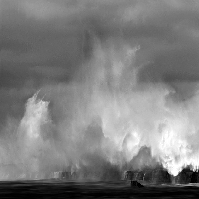 Photograph Fury by Mora lubis on 500px