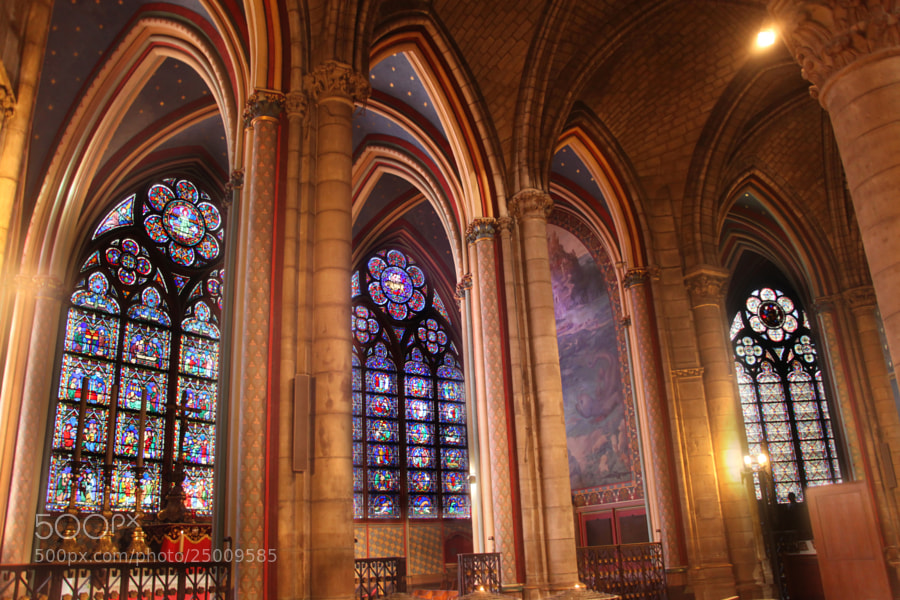 Alone in Notre Dame by Laura Johnson (ljohnsonphoto)) on 500px.com