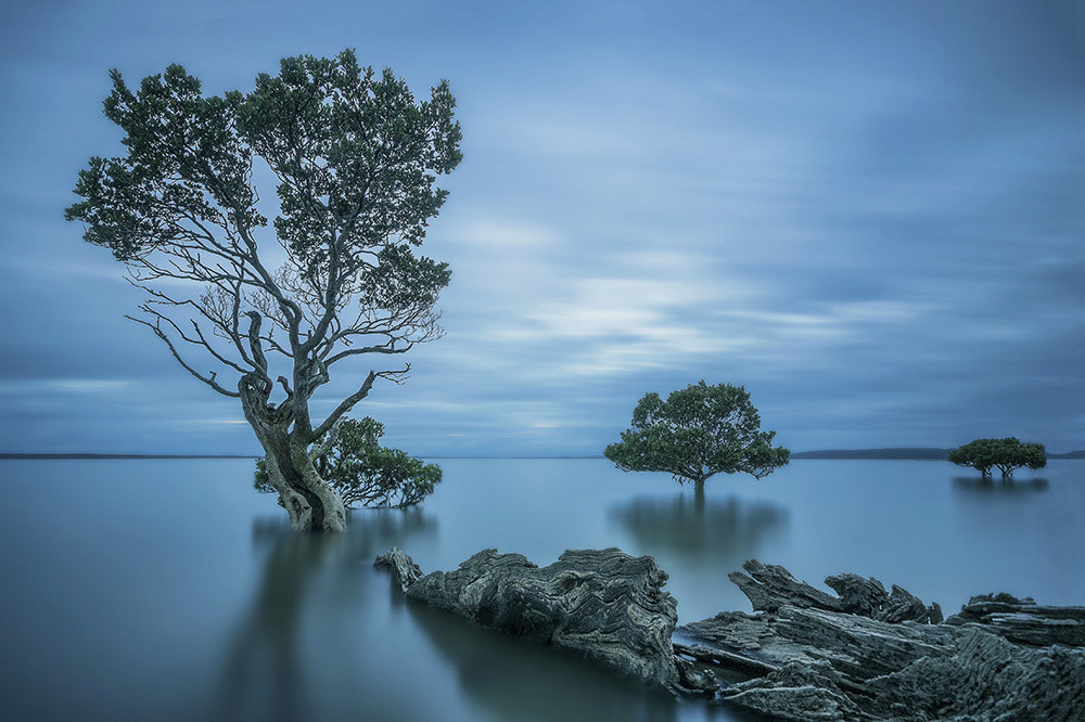 Photograph Odyssey by Dave Cox on 500px