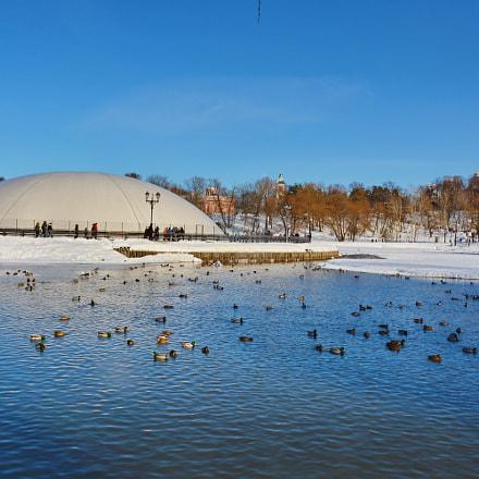 The pond in the, Nikon D5200, AF-S DX Nikkor 18-55mm f/3.5-5.6G VR II