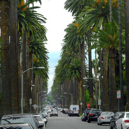 Beverly hills Streets, Nikon COOLPIX S3700