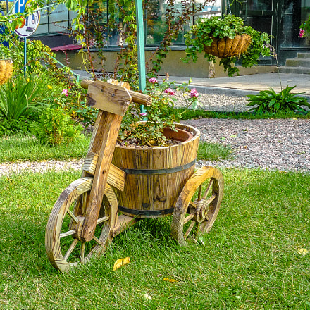 flowerbed on wheels, Panasonic DMC-LZ8