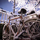 Icey bicycle in winter wonderland