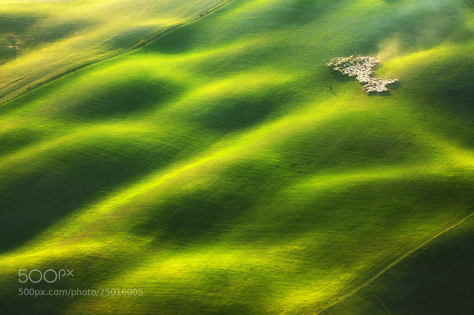 Photograph On wavy grassland by Marcin Sobas on 500px