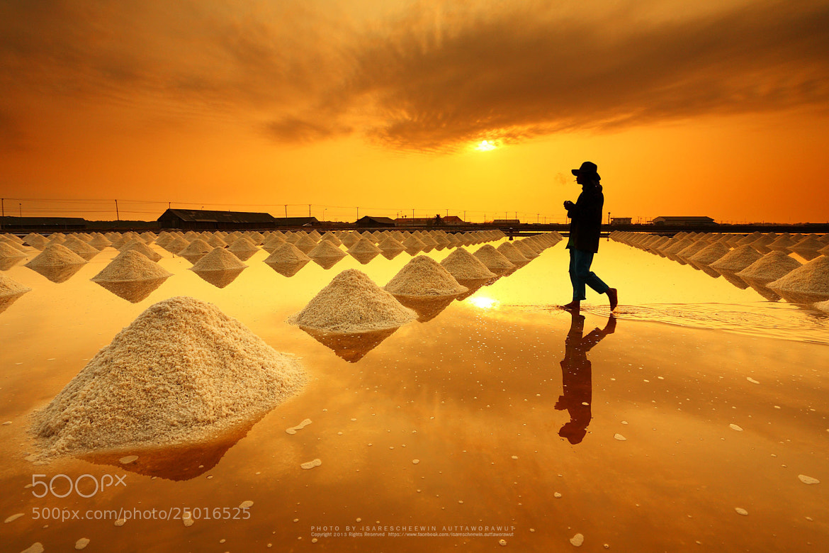 Photograph Salt fields, Phetchaburi, Thailand by isarescheewin on 500px