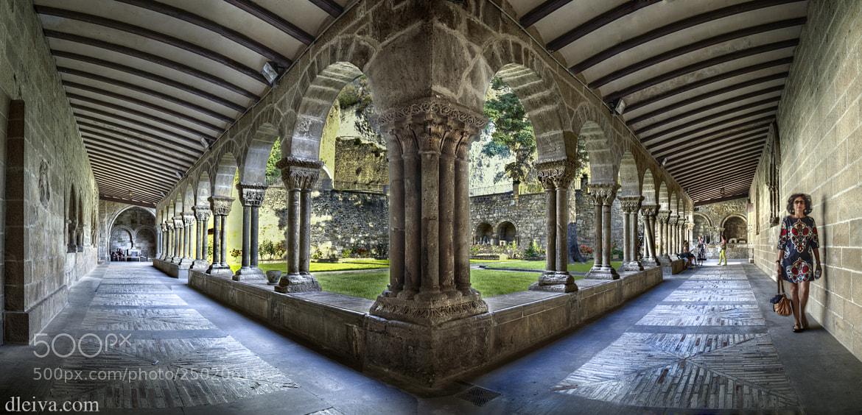 Photograph Romanesque cloister (Estella, Navarra, Spain) by Domingo Leiva on 500px