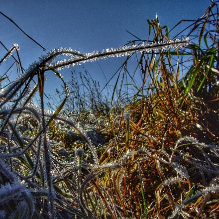 Cold, Fujifilm FinePix F50fd