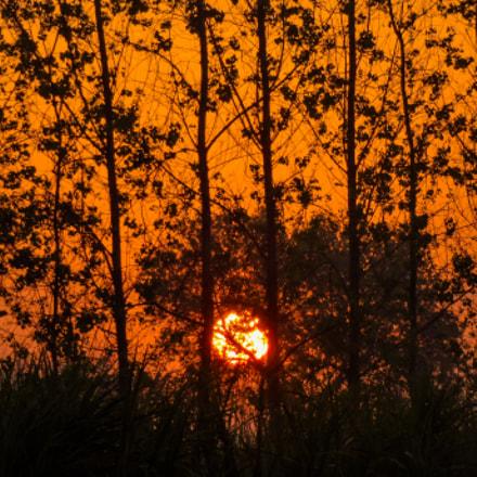 Sunrise, Sony DSC-WX200