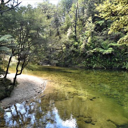 Abel Tasman national park, Nikon D5500, AF-S DX Nikkor 18-55mm f/3.5-5.6G VR II