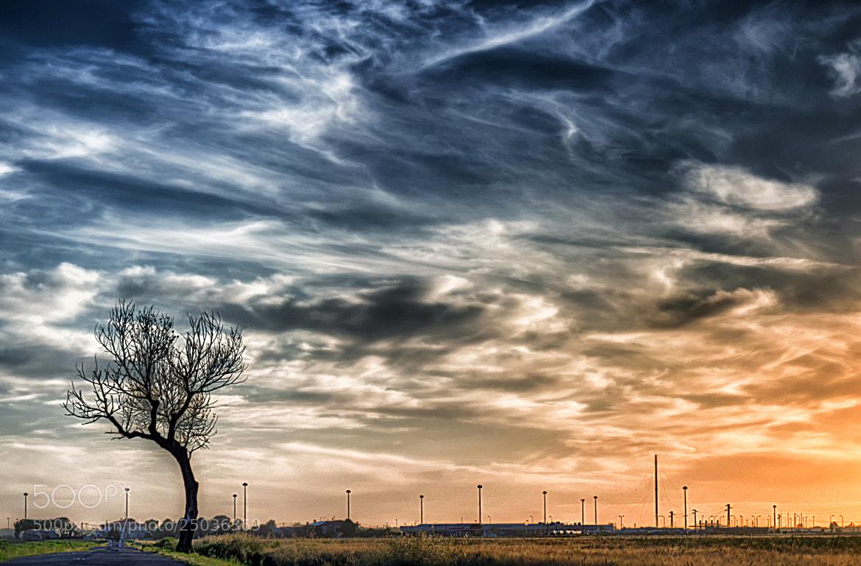 Photograph Alone 2 by Antonio  longobardi on 500px