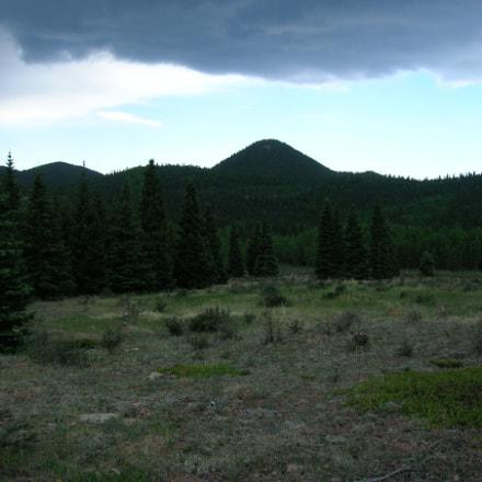 Mountain Forest, Nikon E4600