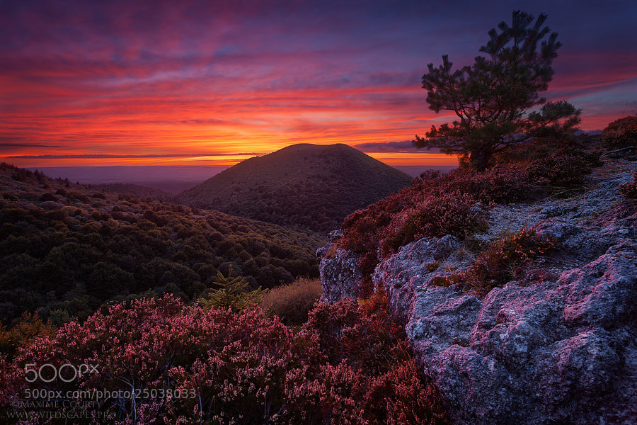 Photograph At the very End of the Day by Maxime Courty on 500px