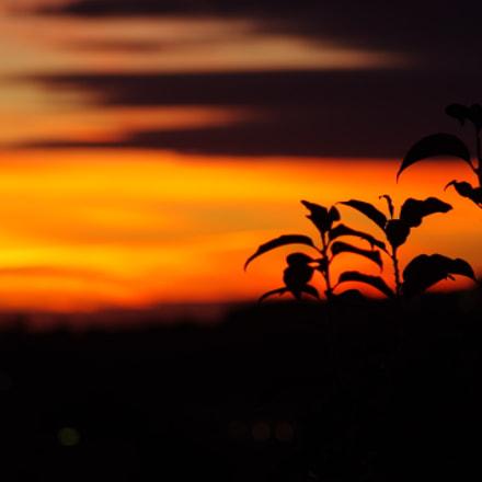 Porto Azzurro Sunrise, Pentax K-R, Tamron AF 70-300mm F4-5.6 LD Macro 1:2