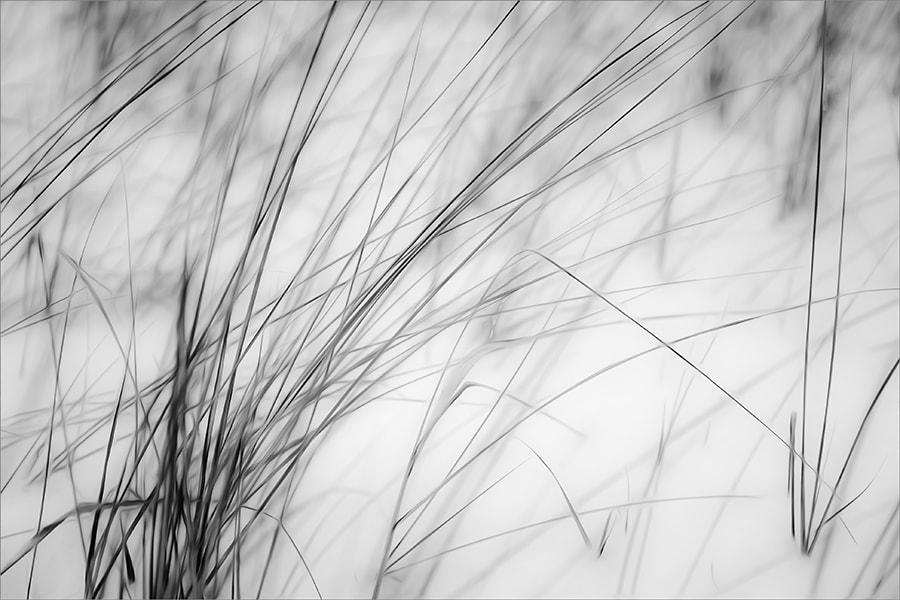 Photograph autograph of nature by Gilbert Claes on 500px