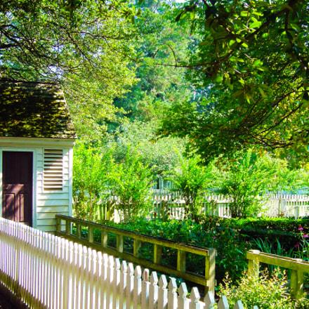 williamsburg garden, Sony DSC-P92