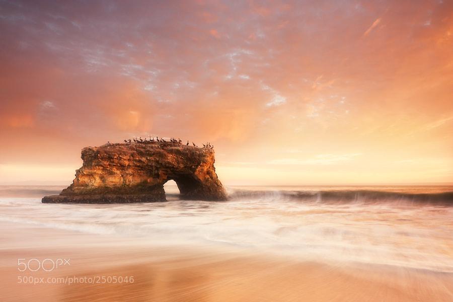 Photograph Bridge Into The Sun by David Richter on 500px