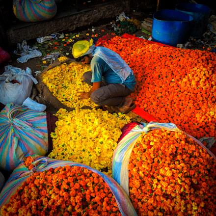 Flower Market, Gazipur, India, Nikon COOLPIX P7800