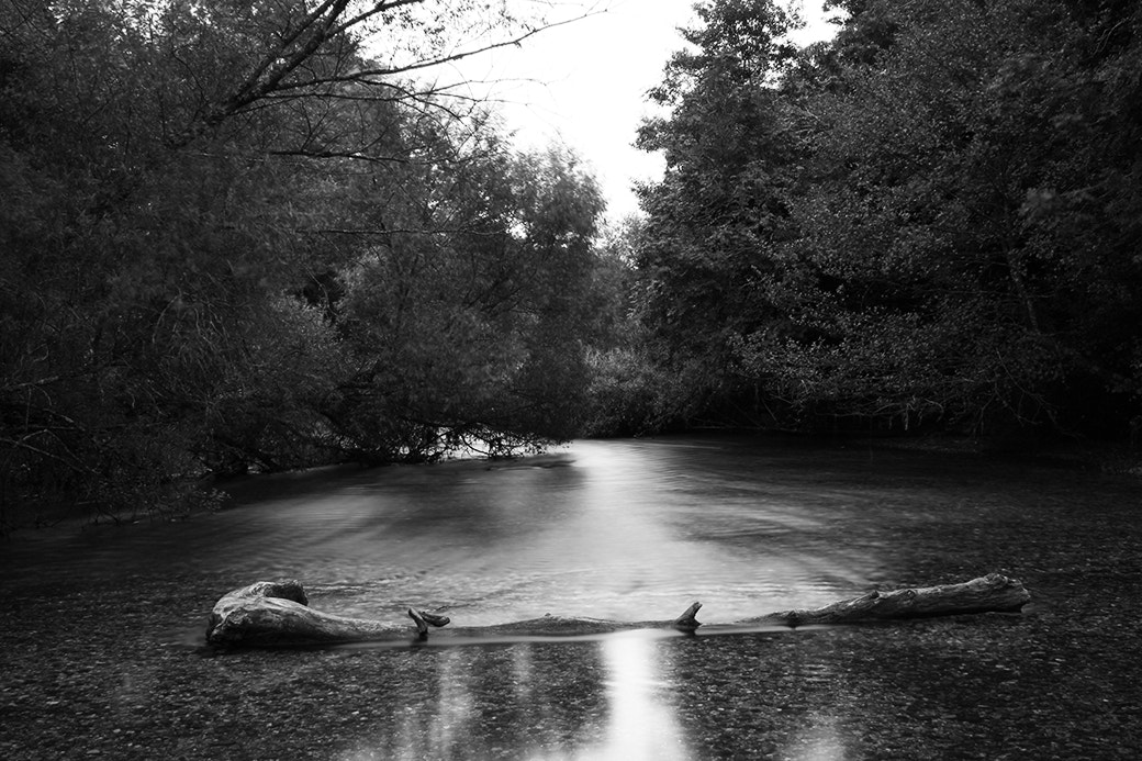 Photograph Black and white river  by Ben Alford on 500px