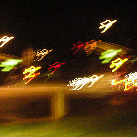 Flock Of Lights, Nikon COOLPIX L6