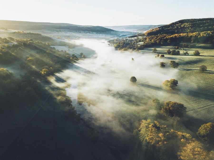 Morning Mist, автор — Daniel Casson на 500px.com
