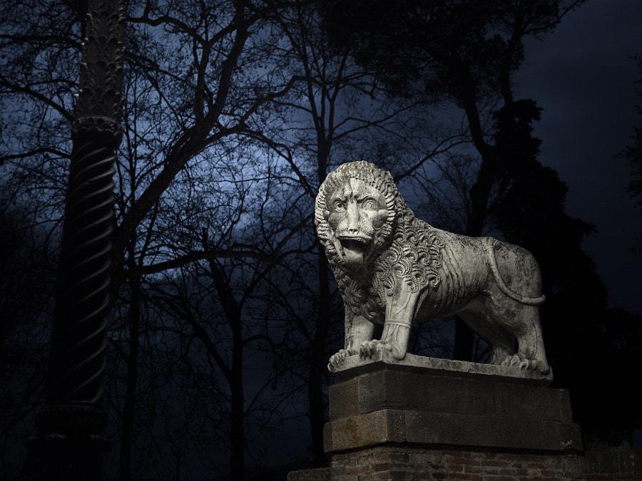 Medieval lion by Giovanni Bertagna on 500px.com