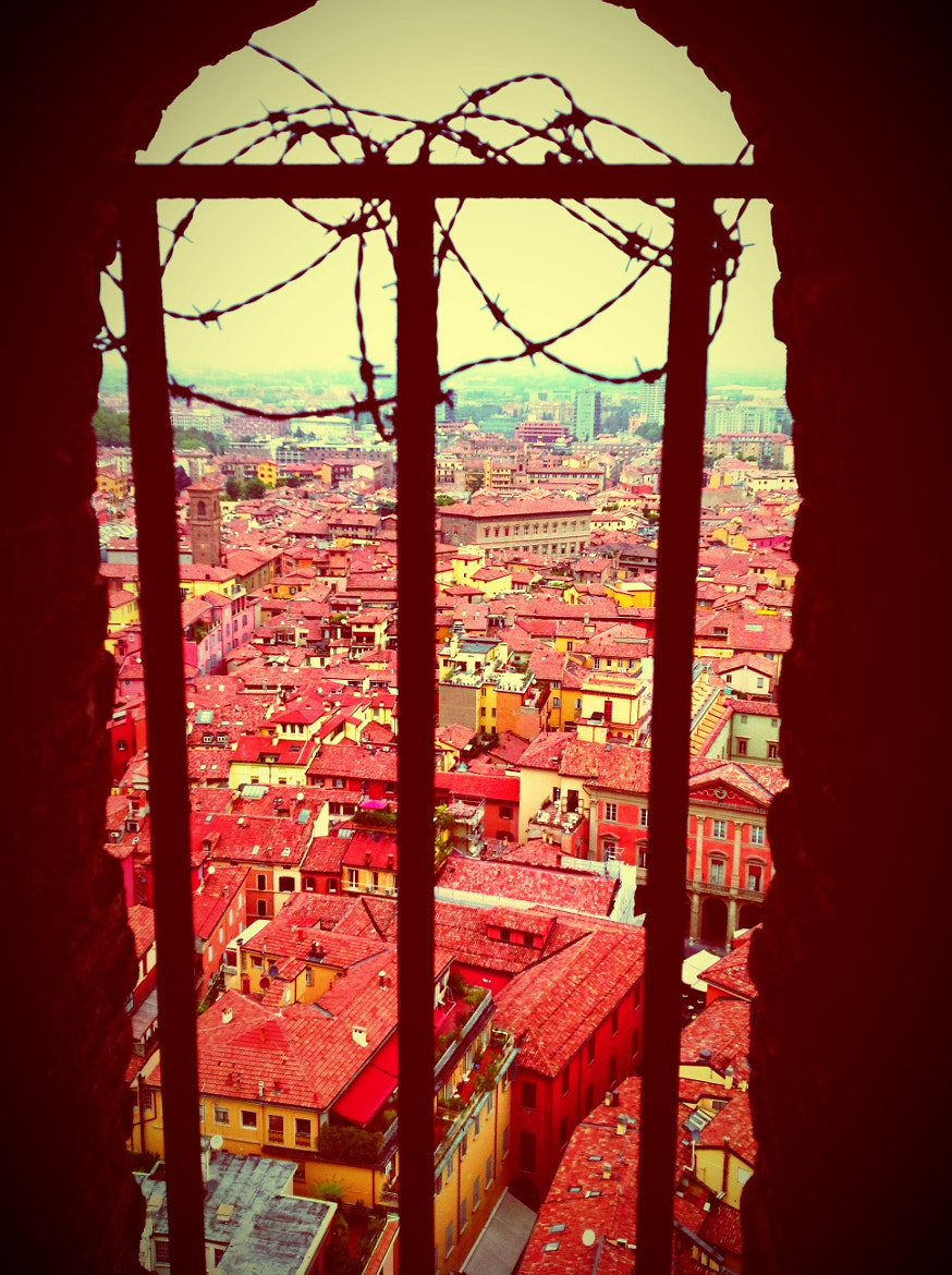 Photograph Red roofs of Bologna by Emma Codraro  on 500px