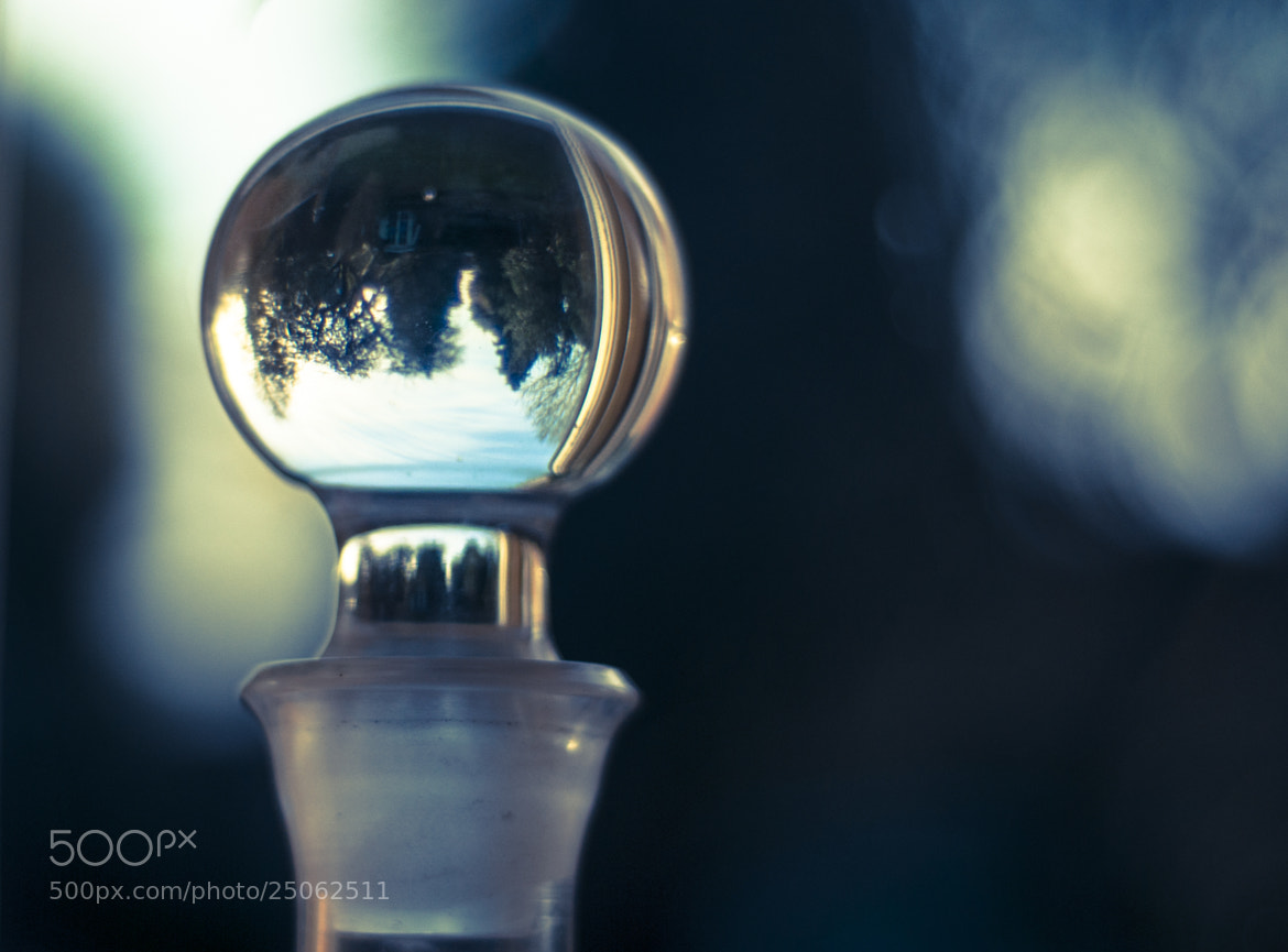 Photograph Through the looking glass by Emma Louise Hall on 500px