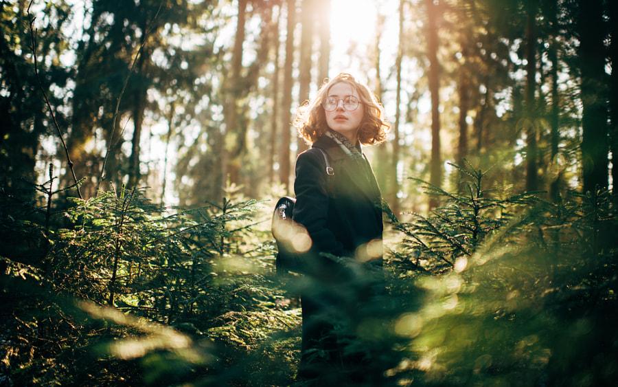 Комарово, автор — Marat Safin на 500px.com