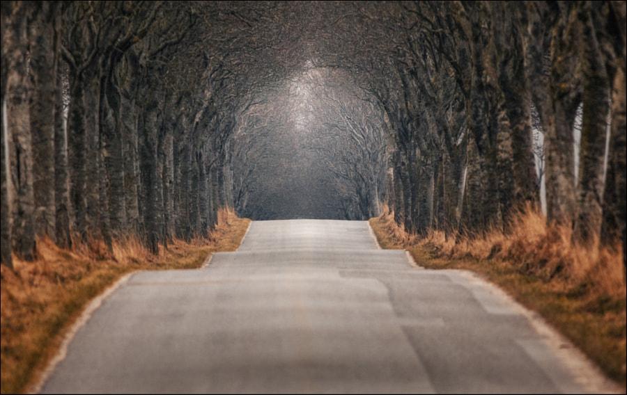 Destination Unknown, автор — Christian Wig на 500px.com