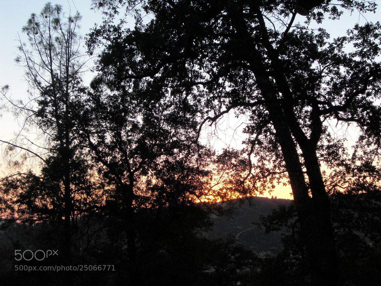 Photograph Sunset in Oakhurst by Joseph Hansen on 500px