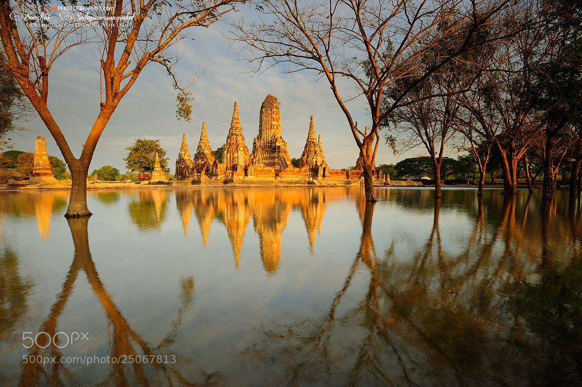 Photograph Wat Chai wat thana ram in evening. by STAR PHOTOGRAPHYs on 500px