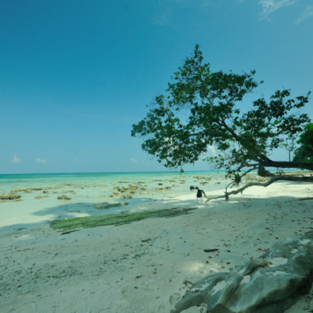 Havelock, Andamans, Nikon D300S, Sigma 10-20mm F4-5.6 EX DC HSM