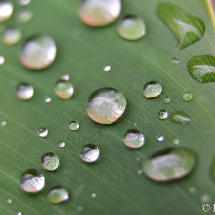 Awesome water drops Bolivia 2017, Nikon D750
