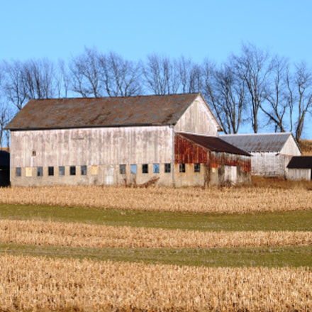 Barn and Field, Nikon D300, Sigma 28-105mm F2.8-4 Aspherical