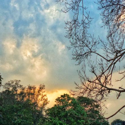 Evening sky, Sony DSC-S5000