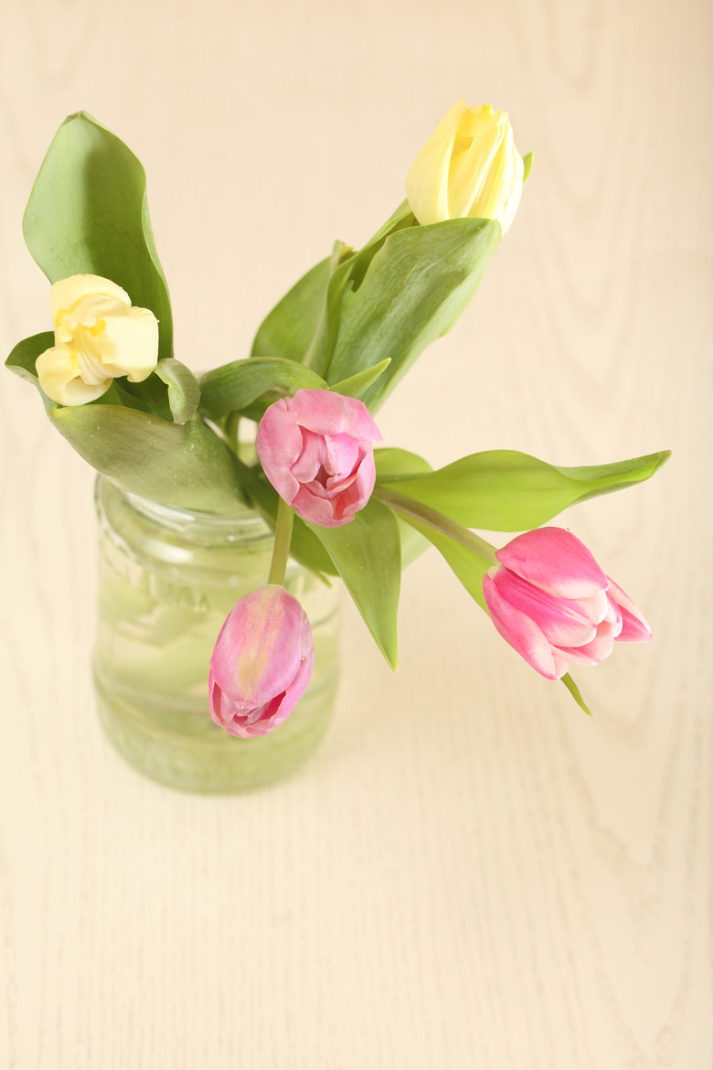 Photograph Tulips on a table by Елена Андреева on 500px