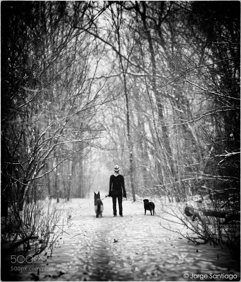 Photograph Sarah and the dogs by jlsantiago on 500px