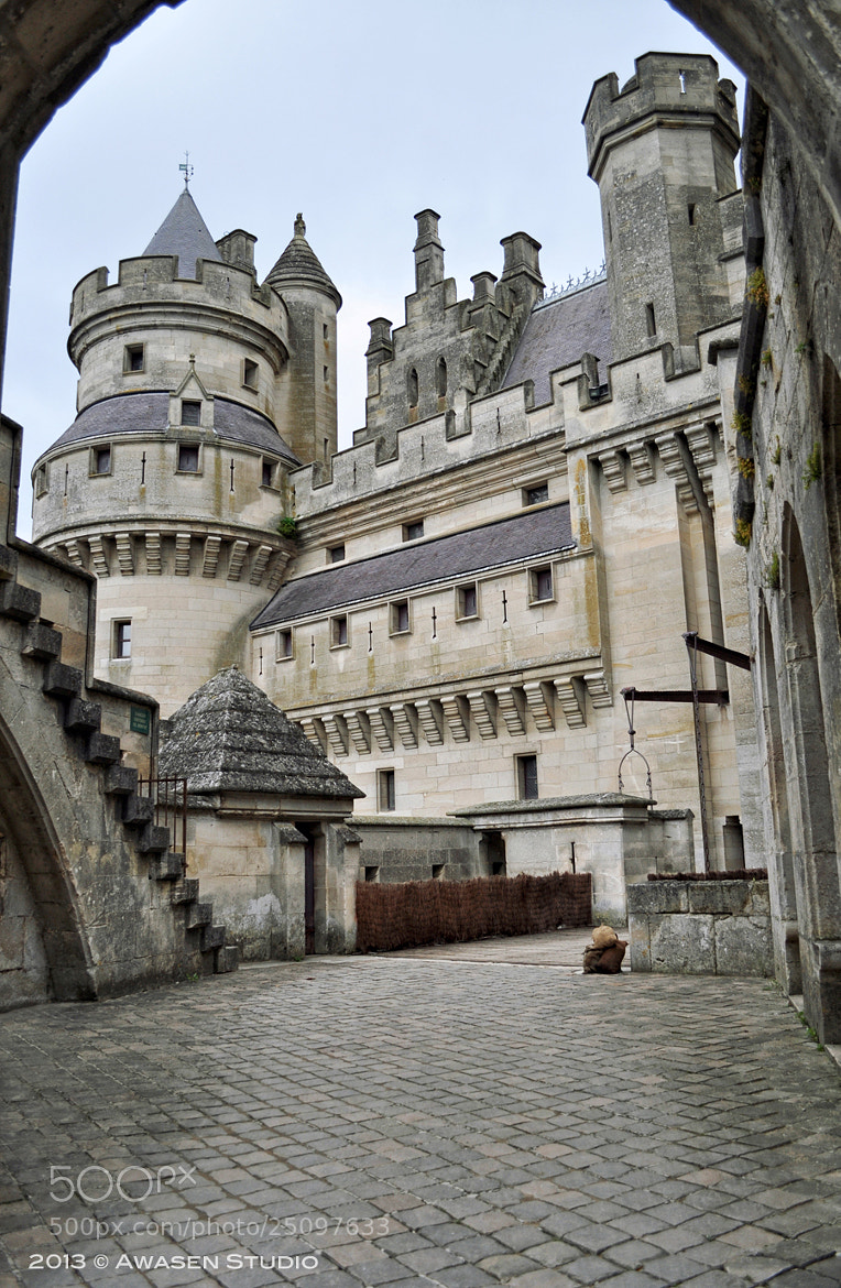 Photograph The Château the Pierrefonds by Laura Mario Pasquinelli on 500px