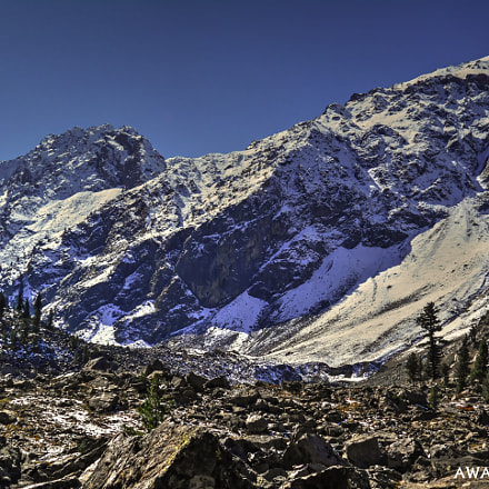 Adventureland, Nikon COOLPIX L28