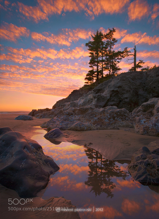 Photograph Too Cool Tide Pools by Vincent Piotrowski on 500px