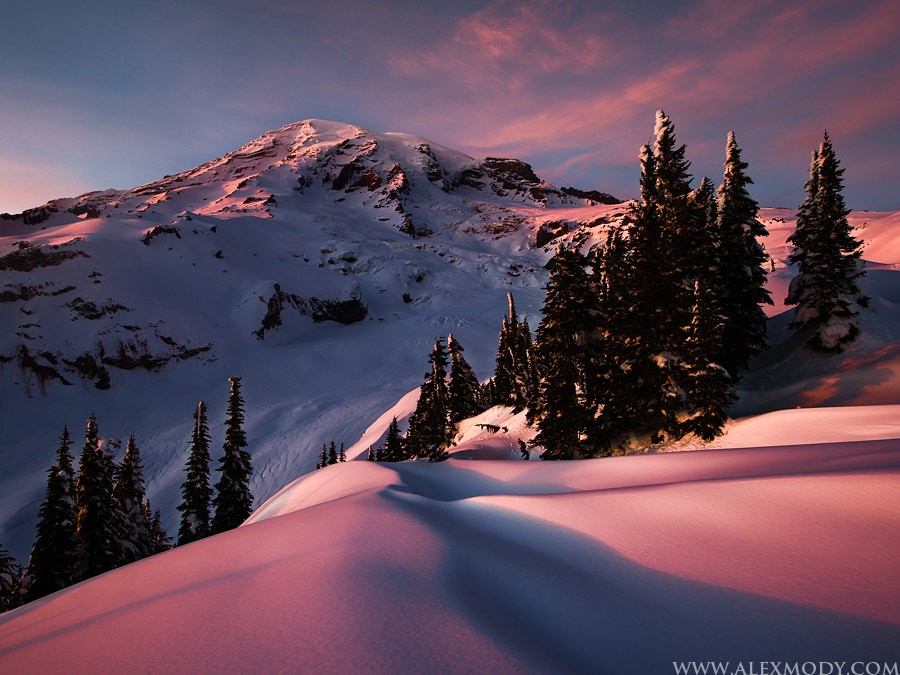 Photograph Frozen Paradise by Alex Mody on 500px