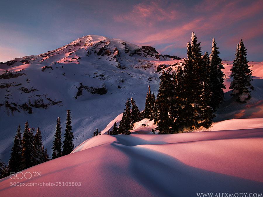 Photograph Frozen Paradise by Alex Mody on 500px