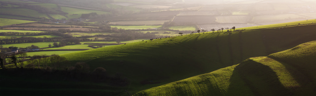 Photograph Somewhere in Dorset by Simon Byrne on 500px