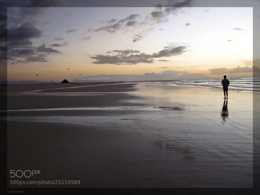 Alone in the Dawn ....