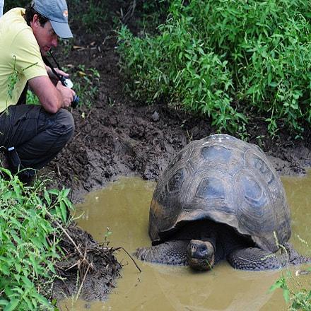 Galapagos Holidays, Nikon D700, AF DC-Nikkor 105mm f/2D