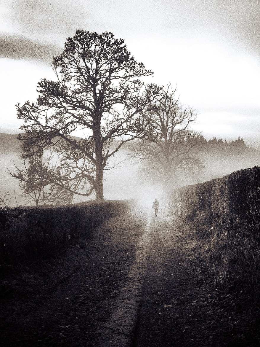 Photograph Foggy morning walk by Coby Chapple on 500px
